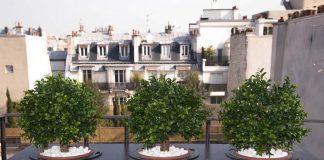 book hotel in paris
