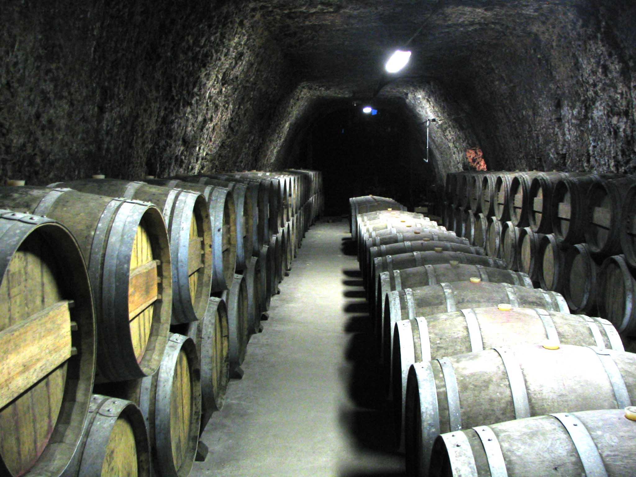 Cave à vin d'un vignoble